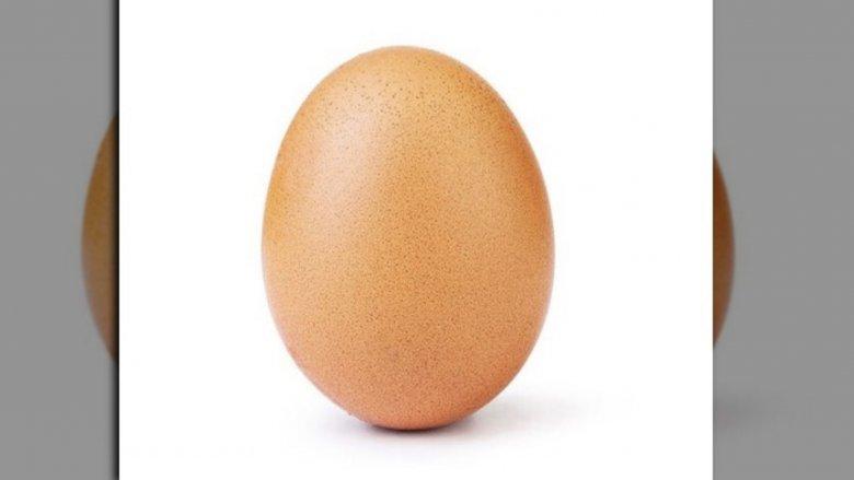 World Record Egg