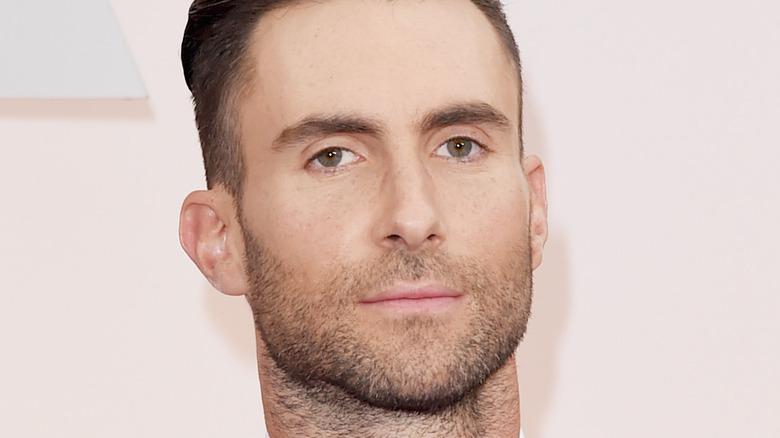 Adam Levine posing on the red carpet
