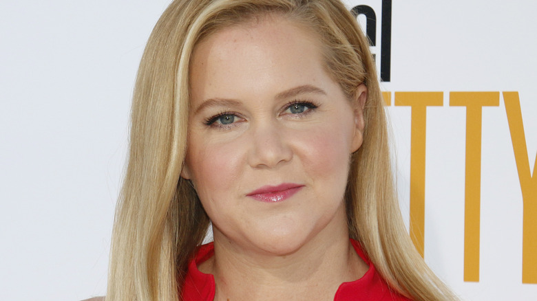 Amy Schumer posing at a movie premiere