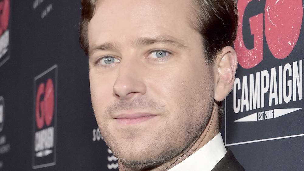 Armie Hammer posing on the red carpet