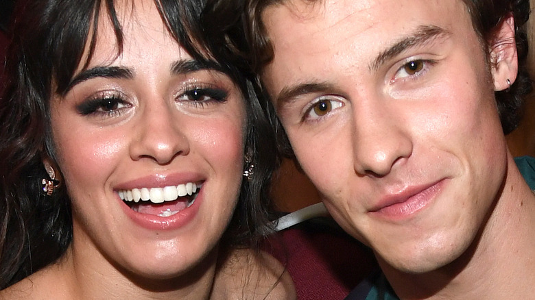 Camila Cabello and Shawn Mendes at the American Music Awards