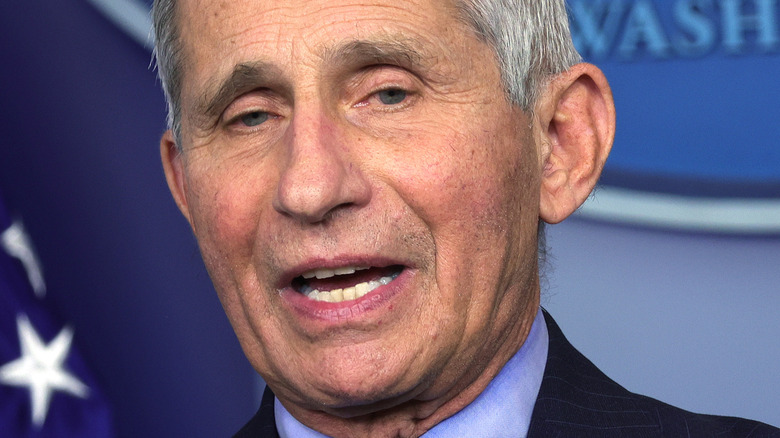 Dr. Fauci speaking at a press briefing