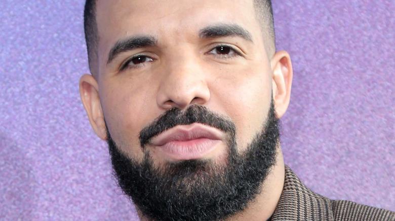 Drake gazing in front