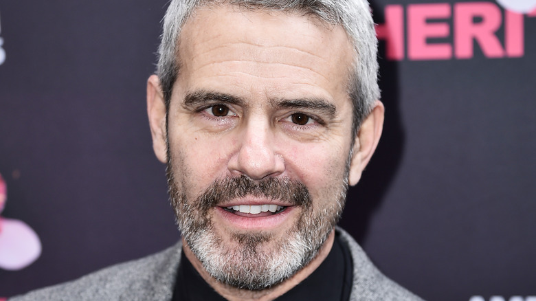Andy Cohen, grey facial hair and hair, smiling, red carpet