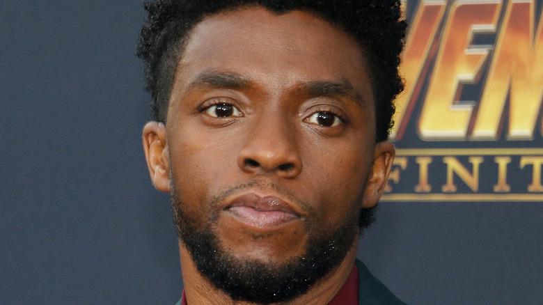 Chadwick Boseman at Avengers: Infinity War premiere