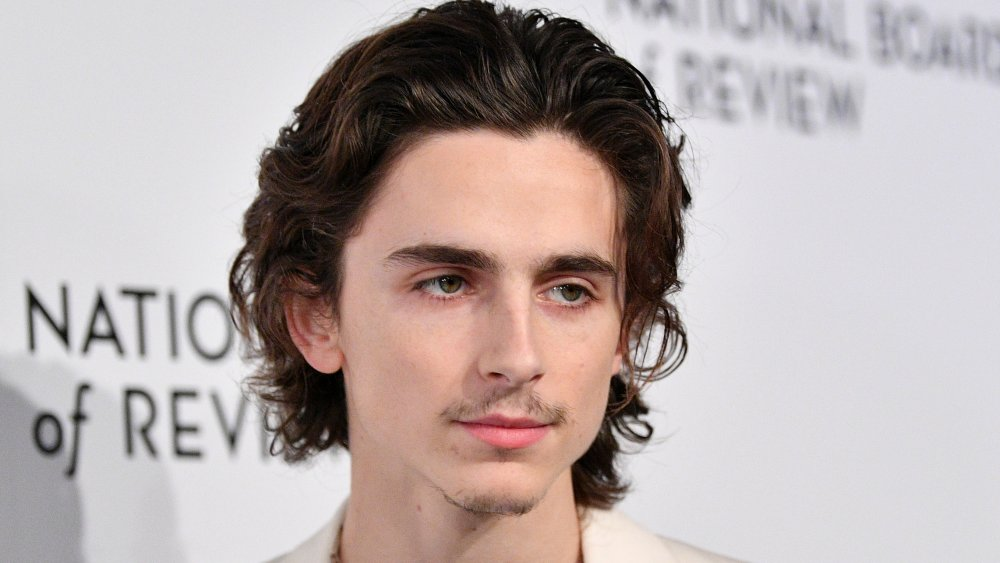 Timothée Chalamet attends the 2020 National Board Of Review Gala