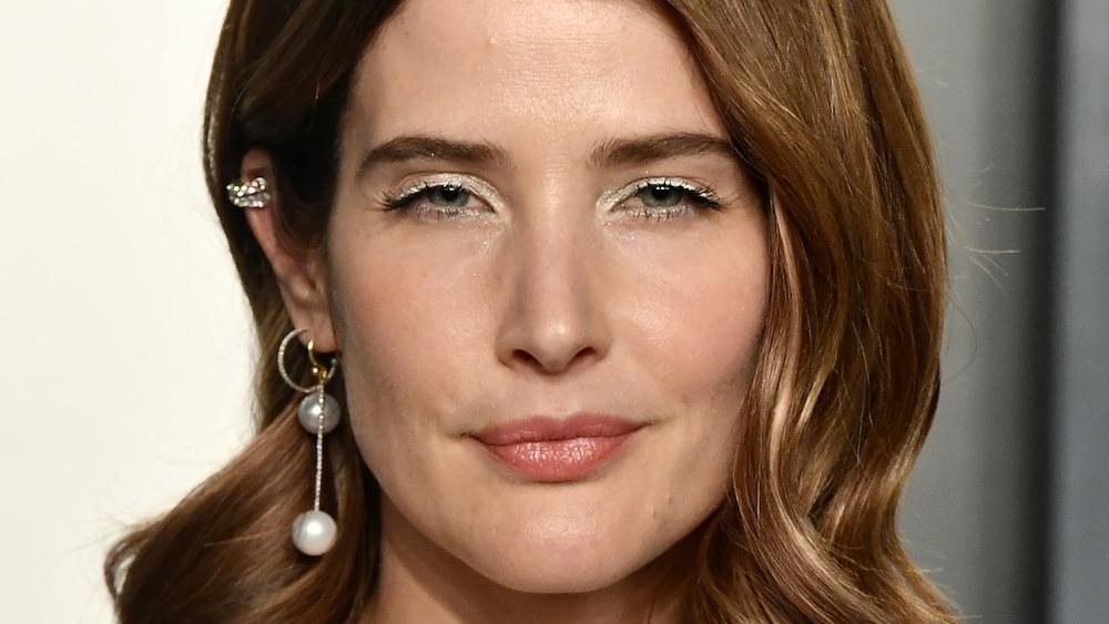 Cobie Smulders closeup