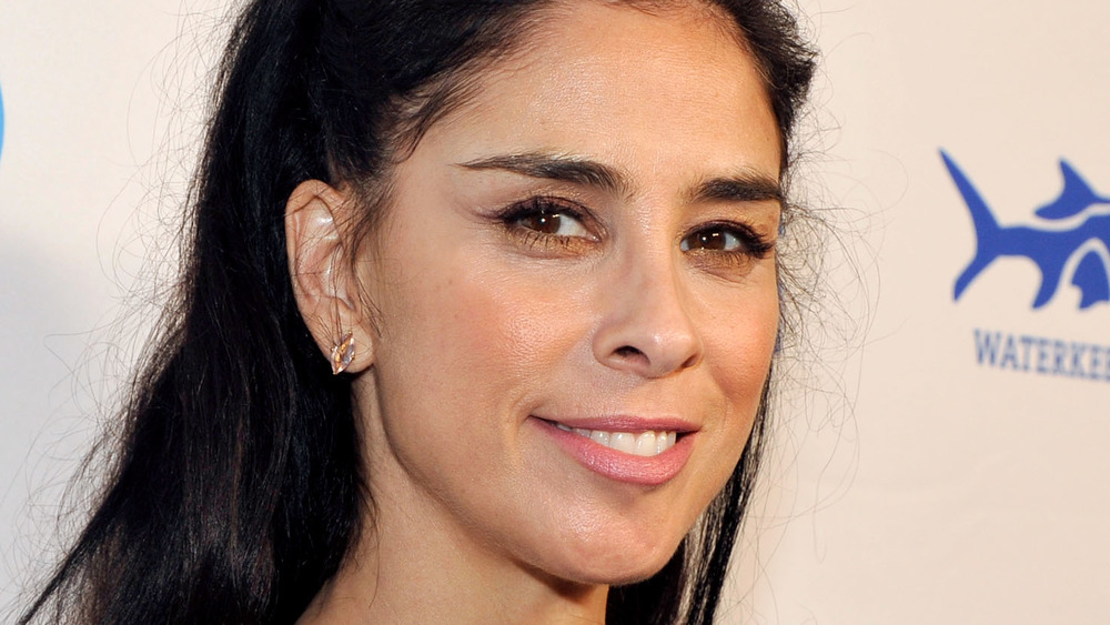 Sarah Silverman smirks on the red carpet at an event