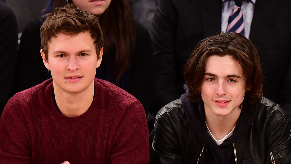 Ansel Elgort sitting courtside at a basketball game, not smiling, wearing a sweater; Timothee Chalamet sitting courtside at basketball game, slightly smiling, in leather jacket