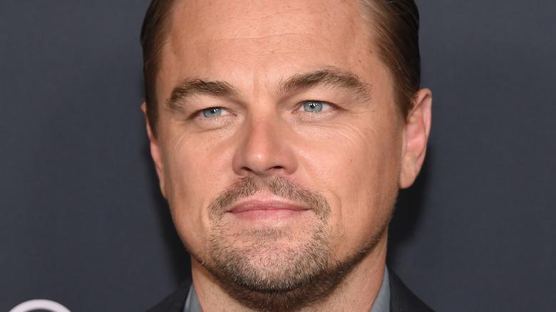 Leonardo DiCaprio smiles on red carpet