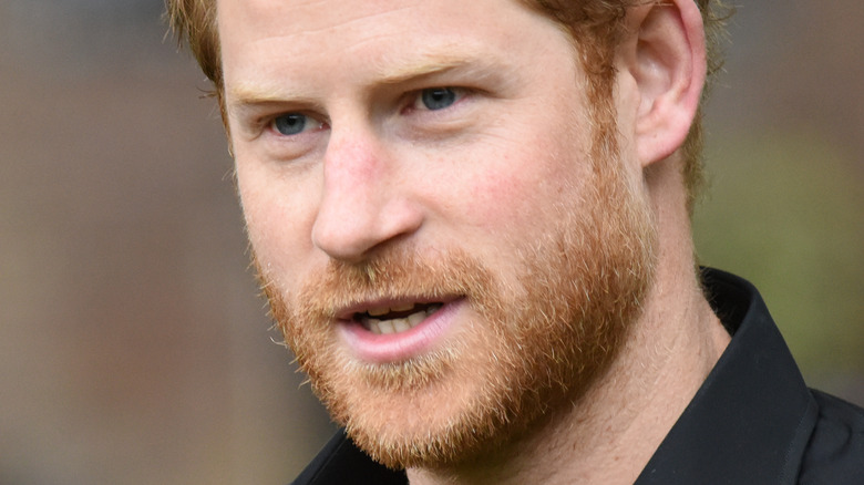 Prince Harry speaking to crowd