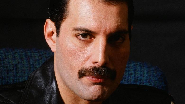 Freddie Mercury looking at camera, seated