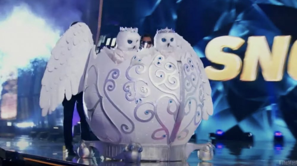 Snow Owls on the Masked Singer