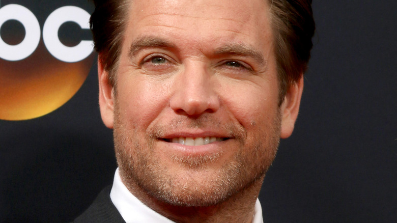 Michael Weatherly smiling on red carpet