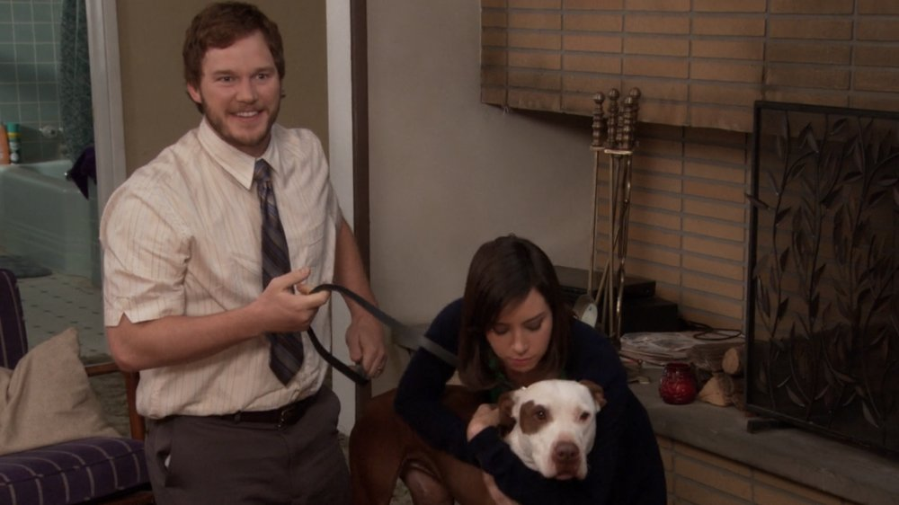 Chris Pratt and Aubrey Plaza in Parks and Recreation
