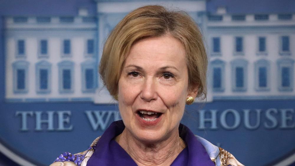 Dr. Deborah Birx speaking at White House briefing