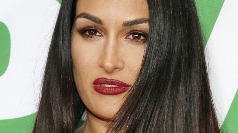Nikki Bella at the Los Angeles premiere of 'Daddy's Home 2'  in 2017