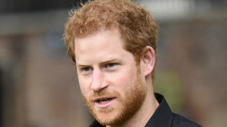 Prince Harry black polo outdoors