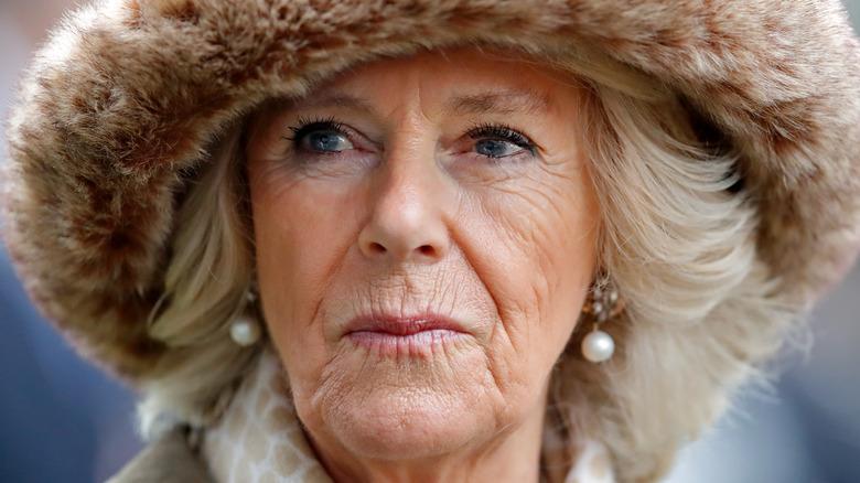 Camilla Duchess of Cornwall smirking