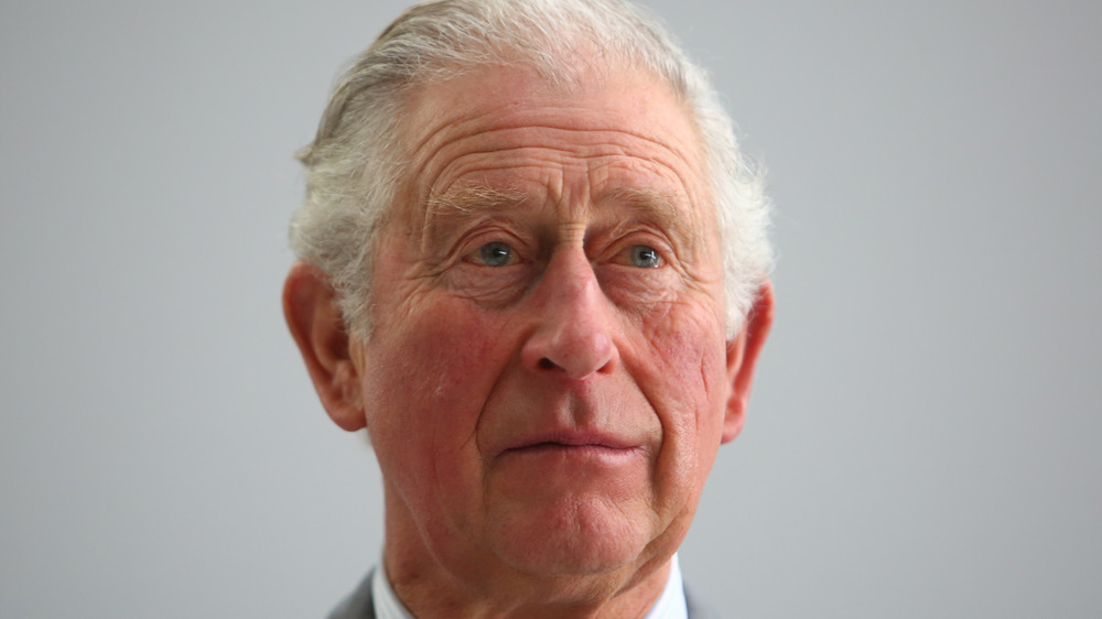 Prince Charles speaks during tour
