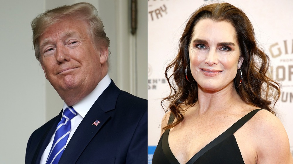 Donald Trump and Brooke Shields smiling
