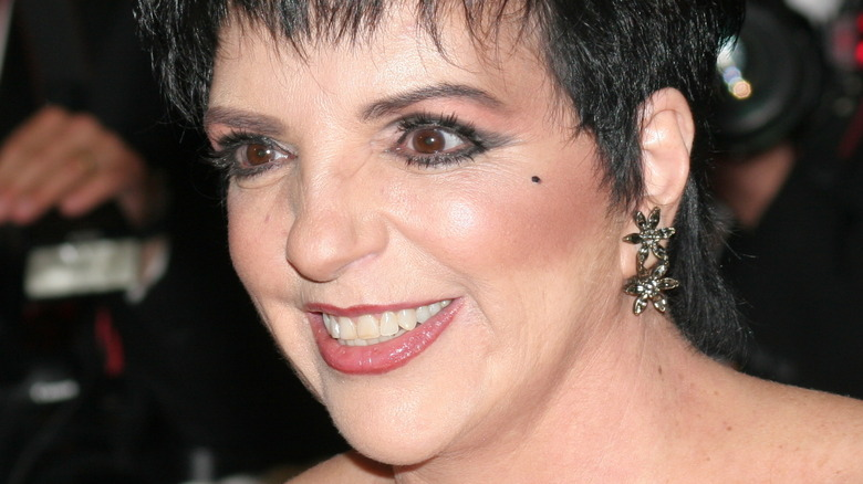 Liza Minnelli smiling on the red carpet