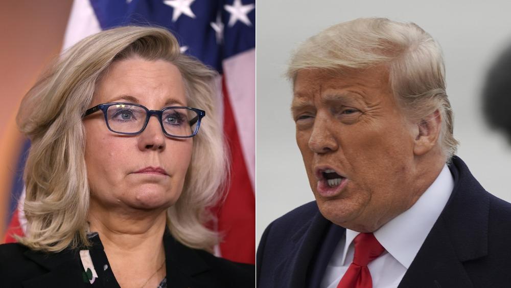Liz Cheney and Donald Trump split image