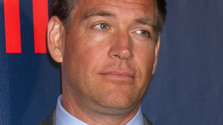 Michael Weatherly looking to the side on the red carpet at the CBS TCA July 2014 Party