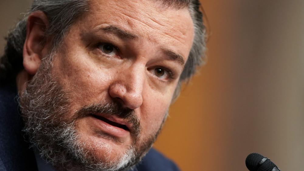 Ted Cruz stares