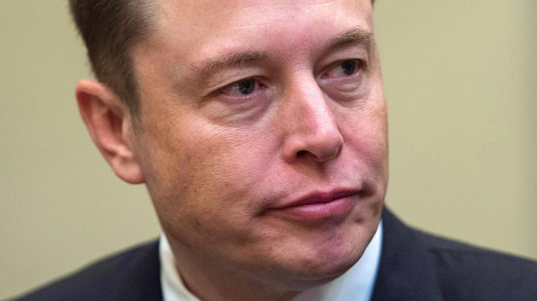 Elon Musk looking to the side with slight frown