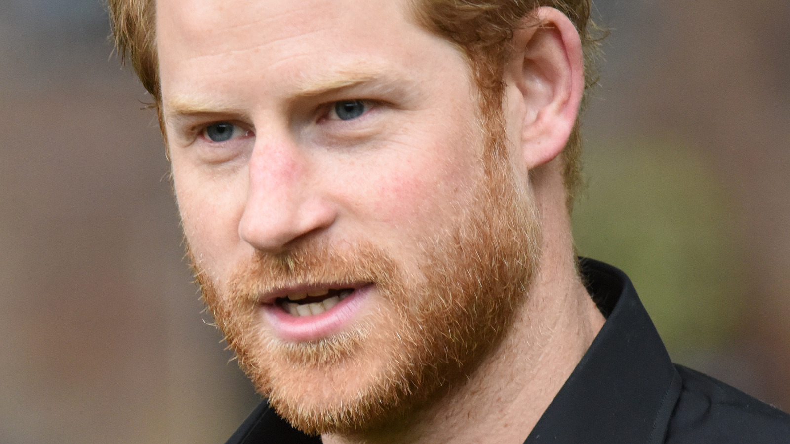 What Is The Royal Family's Biggest Fear Regarding Harry's New Book?