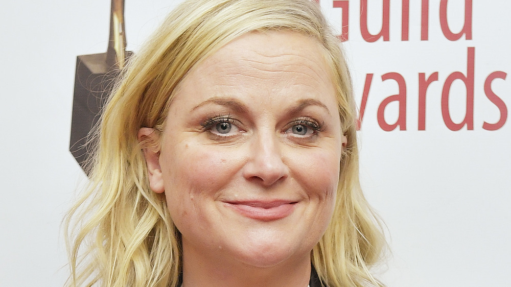 Amy Poehler looking at camera