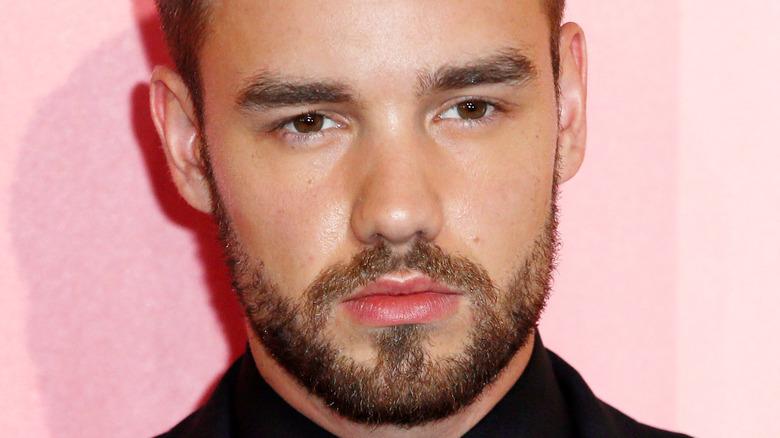 Liam Payne posing