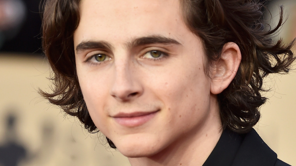 Timothee Chalamet smiles on the red carpet