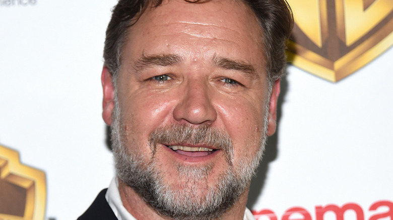 Russell Crowe, The Big Picture premiere red carpet