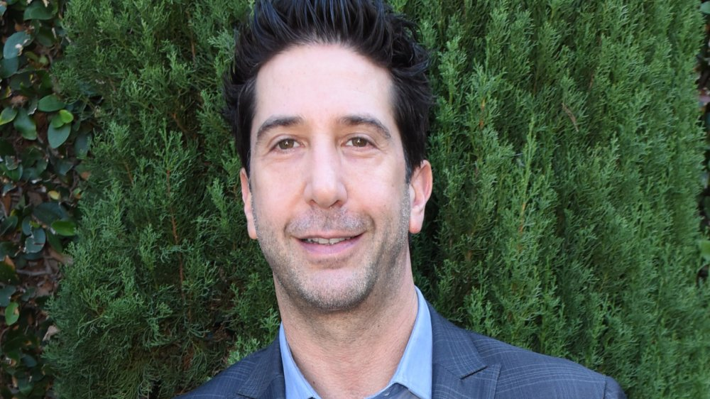 David Schwimmer, who played Ross Geller on Friends