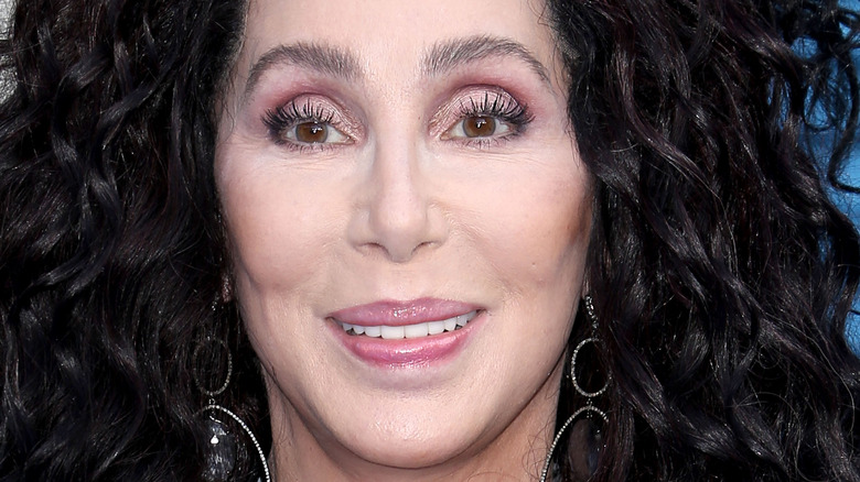 Cher smiling with big hair