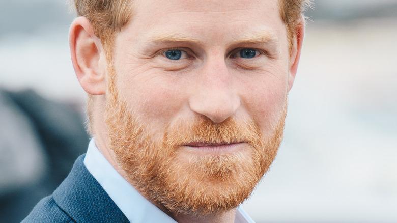Prince Harry, NZ, 2018