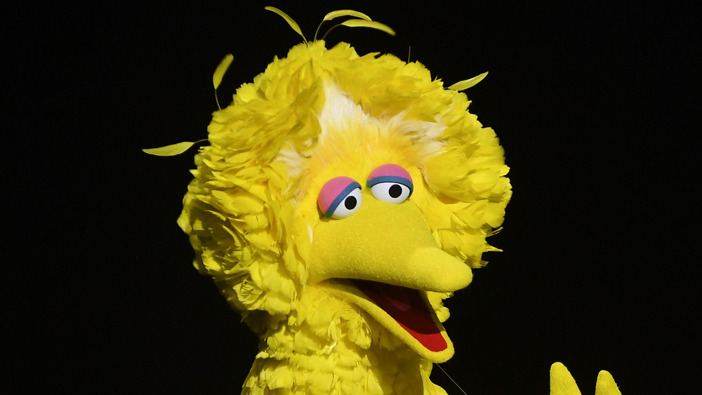 Big Bird performing on stage